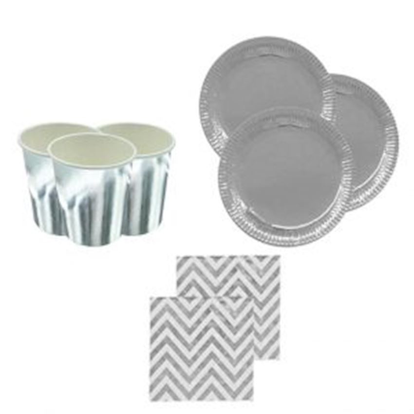 10 Seater Metalized Plate Cup Napkin Set Silver Event & Party Supplies