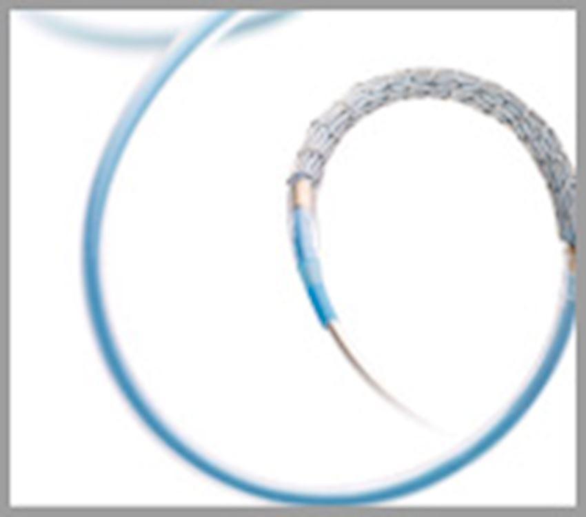 Bare Metal Coronary Stents