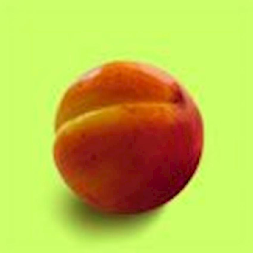 Edmis Soaps Peach Hand Wash