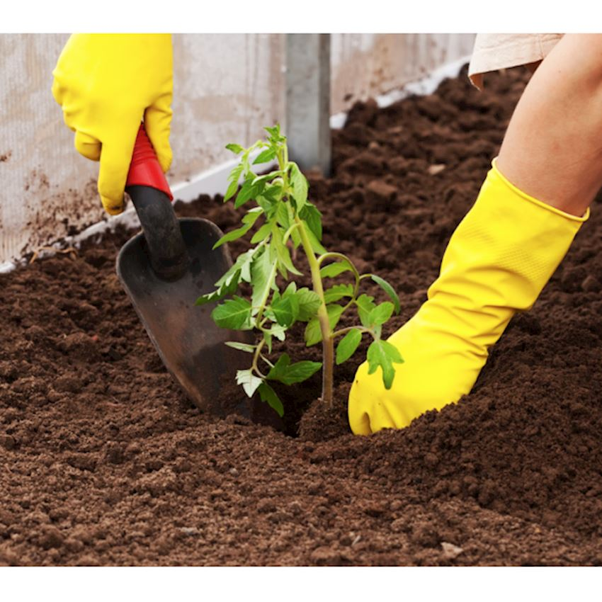 Garden Natura Agriculture Hobby Peat