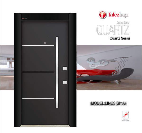 Luxury Steel Door Lines Black