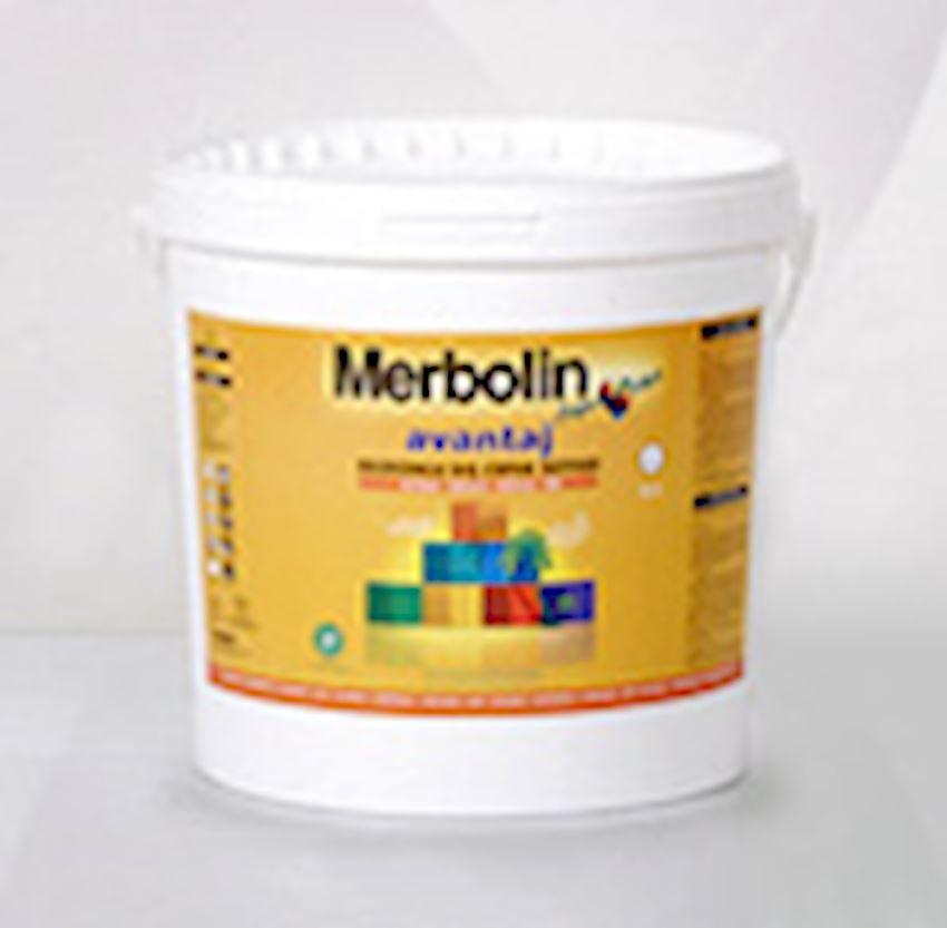 Merbolin advantage silicone exterior Paints & Coatings