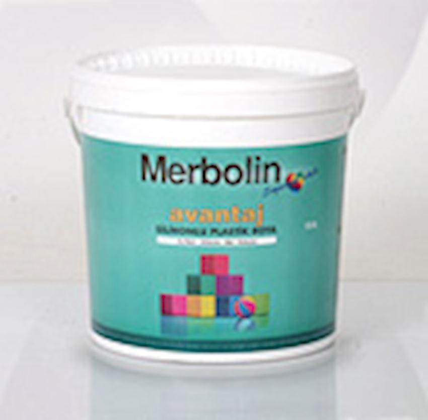 Merbolin Advantage Silicone Plastic Paint Paints & Coatings