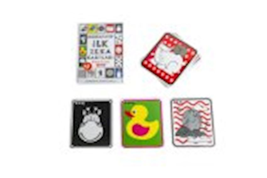 Other Educational Toys- FLASH CARDS MY BABY'S FIRST INTELLIGENCE CARDS