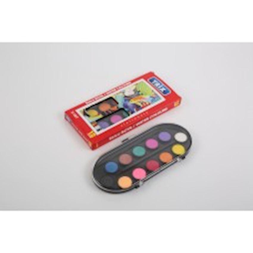 Standard 12 pcs Box Watercolor Paint Brushes