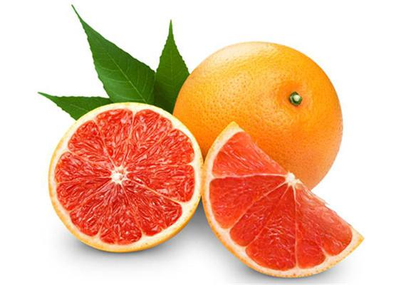 STAR RUBY GRAPEFRUIT / Product Info | TraGate
